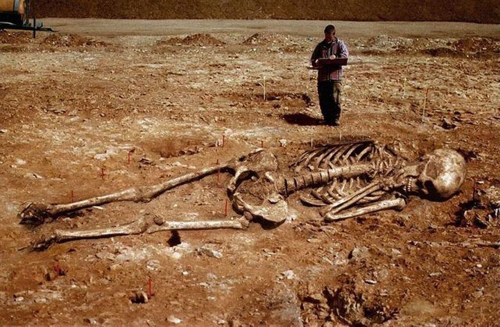 Σκελετοί γιγάντων 2