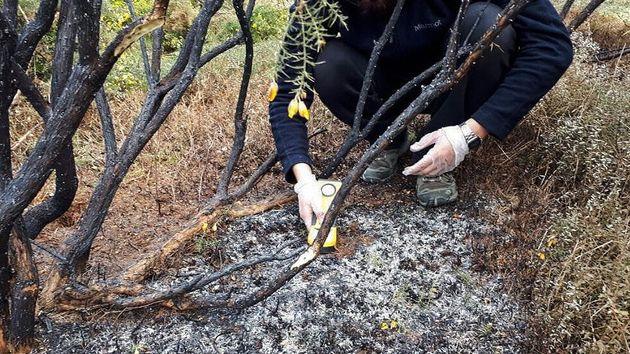 Χιλή: Μυστήριο με πύρινες μπάλες που έπεσαν στη Γη, και δεν είναι μετεωρίτες